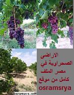 زراعة و استصلاح الاراضى الصحراوية في مصر