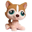 Littlest Pet Shop Multi Packs Husky (#386) Pet