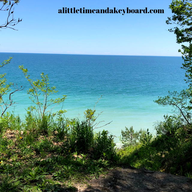 Stunning views of Lake Michigan framed by trees and greenery at Grant Park in South Milwaukee, Wisconsin.