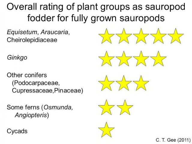 Superfood for Mesozoic herbivores?