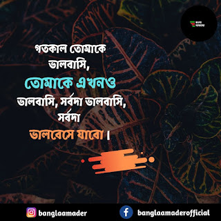Bangla Shayari | Love quotes in Bengali