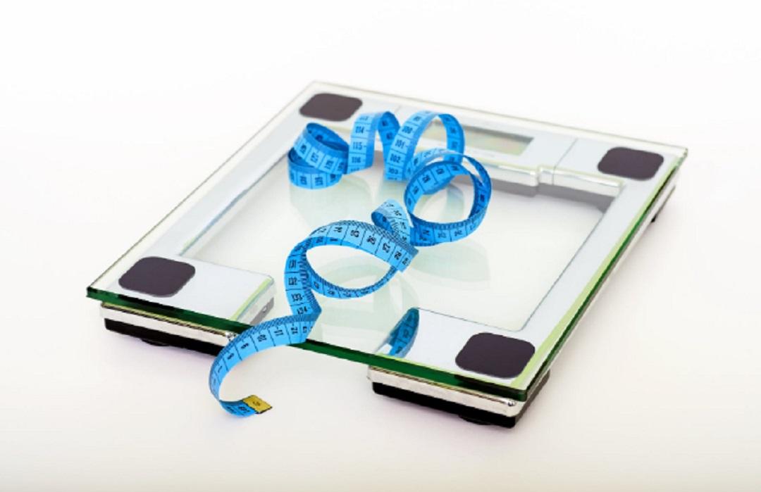 Weight Watchers Dieting