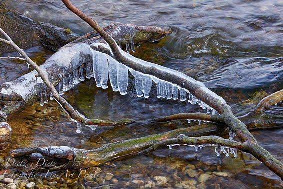 Eisglocken am Zugersee auf der Chiemenhalbinsel