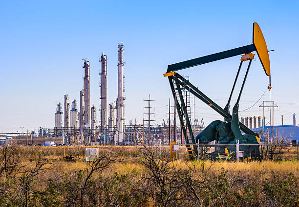 The oil and gas sector can provide more than 1,00,000 jobs during this year