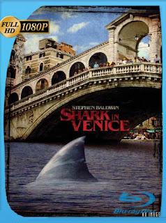 Tiburón en Venecia (2008) HD [1080p] Latino [GoogleDrive] PGD