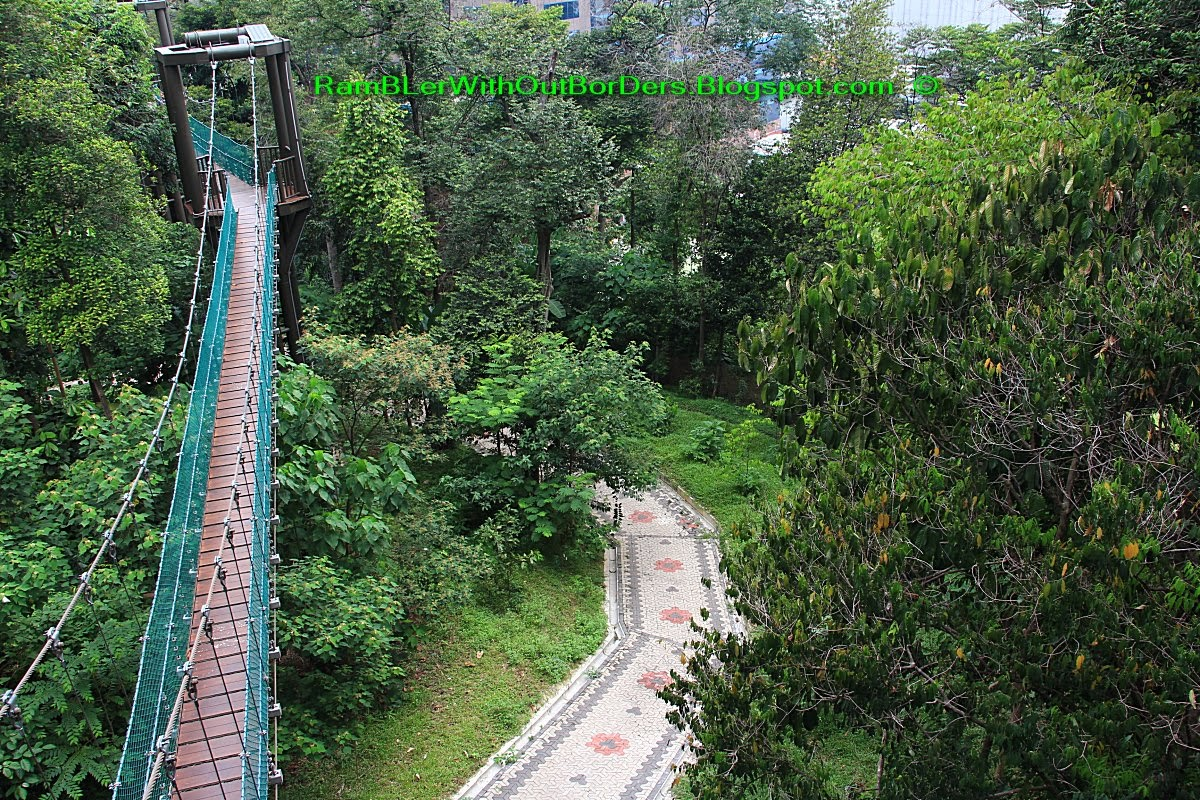 Suspension bridge FKL Forest Eco Park KL Tower Kuala Lumpur Malaysia & RamBLer WithOut BorDers * : KL Tower and Bukit Nanas Forest Reserve