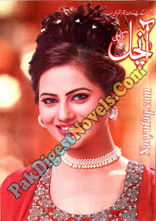 Aanchal Digest February 2020 - Title Image