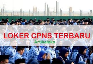 Lowongan CPNS Terbaru