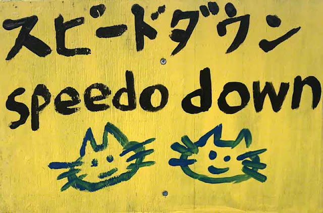 art, Japan, Okinawa, silly, sign, Wordless Wednesday