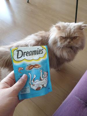kedi ödül maması, kedi ödülleri