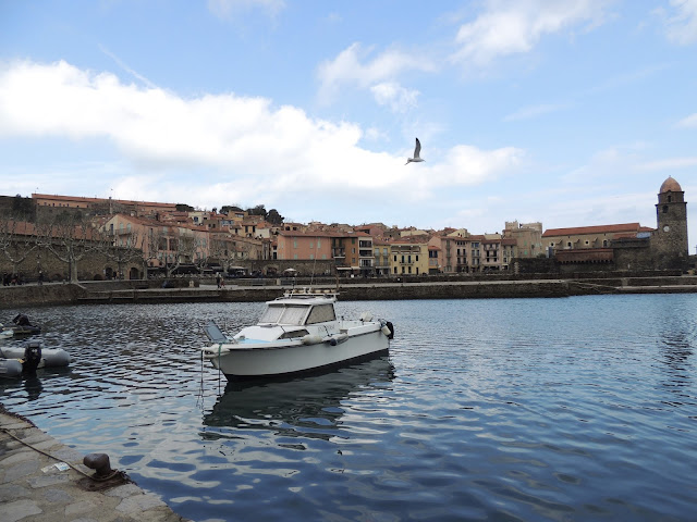boat in the port of collioure, south of france,
