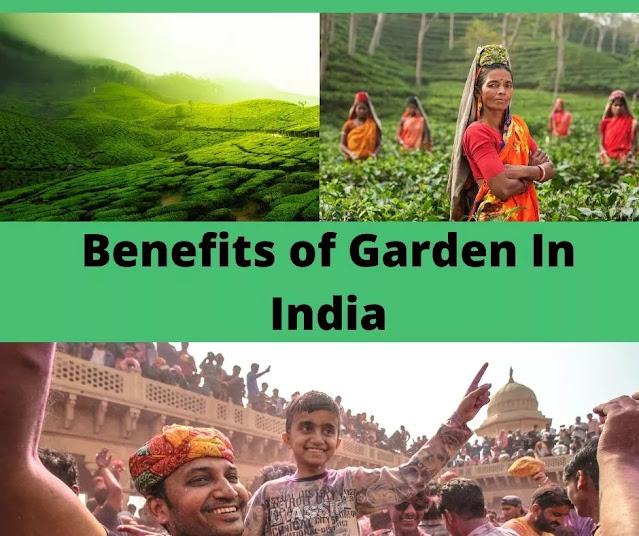 Indian garden benefits