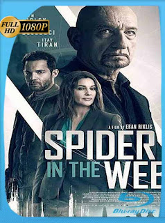 La Trampa de la Araña (2019) HD [1080p] Latino [GoogleDrive] SilvestreHD