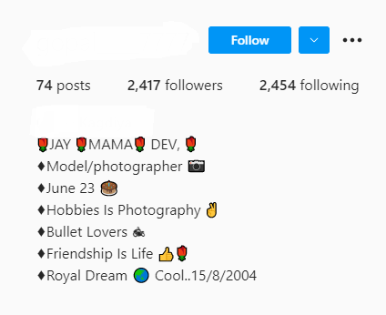 Cool Instagram Bio for Boys