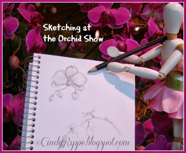 Orchid Show 2014, Chicago Botanic Gardens, Flora's Friday Art Adventures, Cindy Rippe, Drawing, Art Mannequin