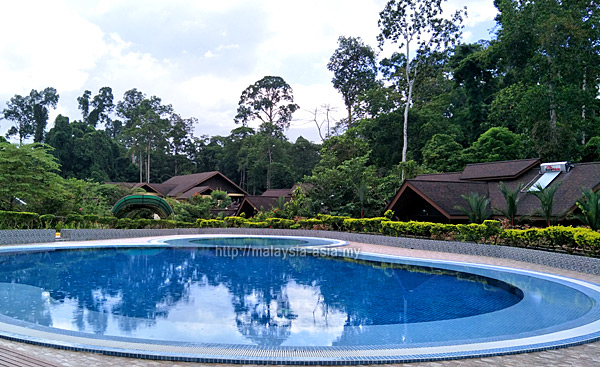 Pool at My Nature Resort Sepilok