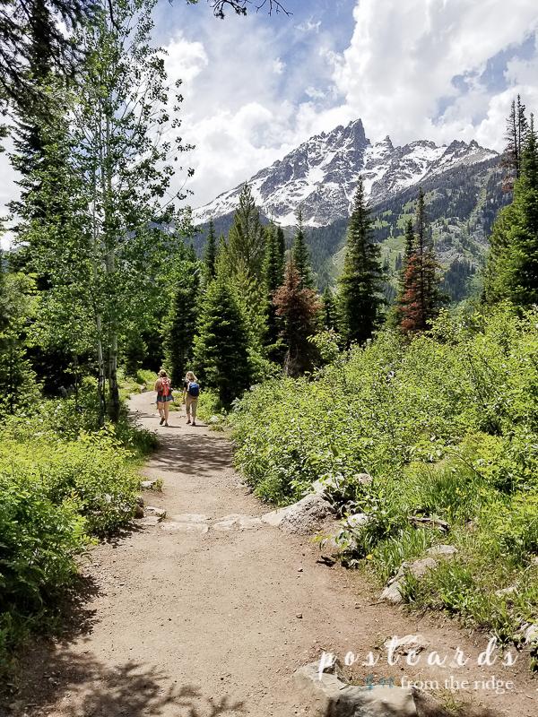hiking on jenny lake trail at Grand Tetons National Park