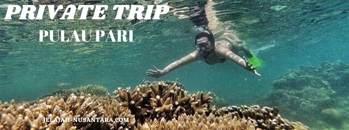 paket private trip pulau pari