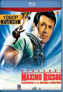 Maximo Riesgo [1993] [1080p BRrip] [Latino-Inglés] [LaPipiotaHD]