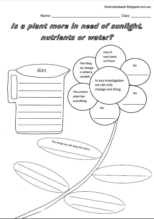 Science to Teach: Worksheets to complete the unit on