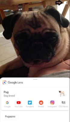 يضيف تحديث Google Lens اختصارًا لألبوم الصور و جوجل درايف