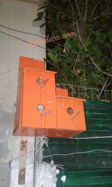 Casinha de passarinho laranja