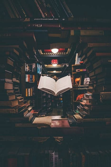 The feeling of getting lost in the Book
