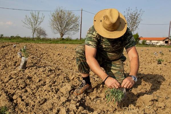 Τι αλλάζει στις αγροτικές επιδοτήσεις του ΟΠΕΚΕΠΕ