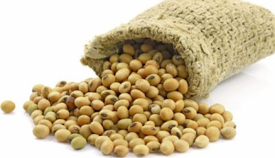 Manfaat dan Efek Samping Kacang Kedelai untuk Kesehatan