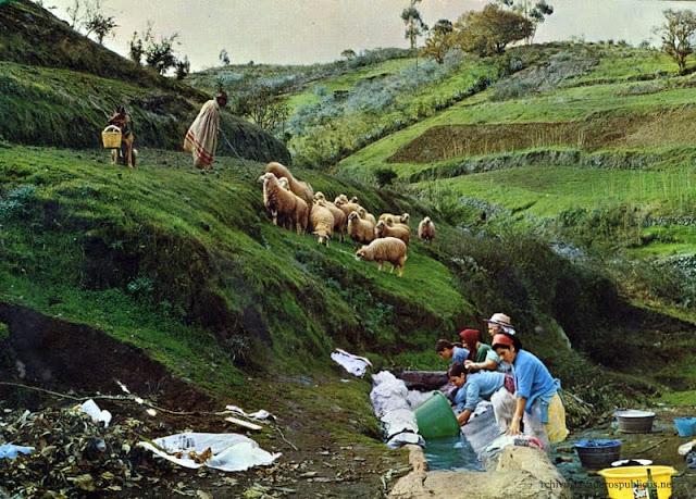 lavanderas-barranquillo-zamora