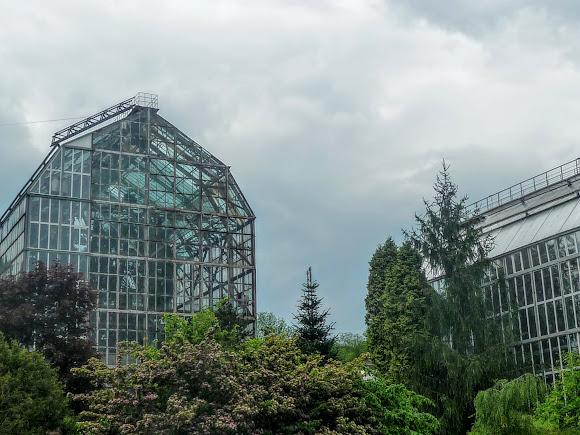 Львов. Ботанический сад Львовского университета имени Франко