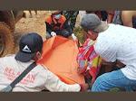 Delapan Orang Tewas Tertimbun Longsor di Kawasan Tambang Emas Solok Selatan