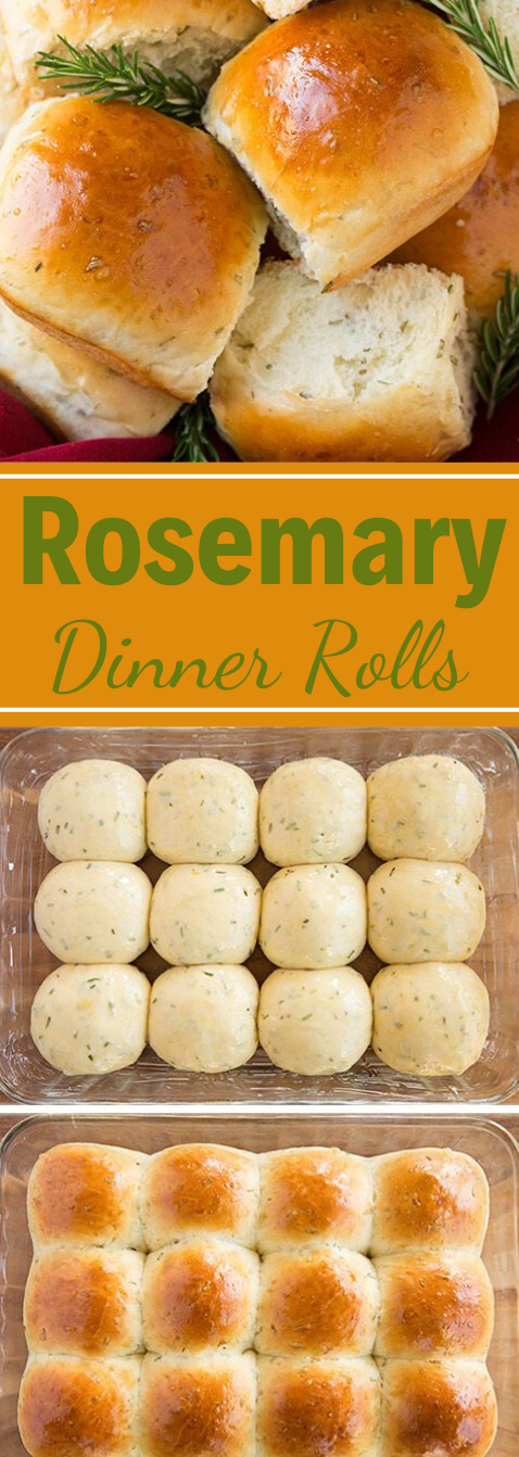 Rosemary Dinner Rolls #appetizers #snacks #creamcheese #rosemary #lunch
