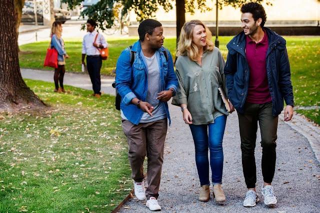 اعلان عن منح المعهد السويدي لدراسة الماجستير بالسويد سبتمبر 2017