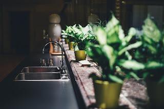 لا تنسوا النباتات الداخلية!