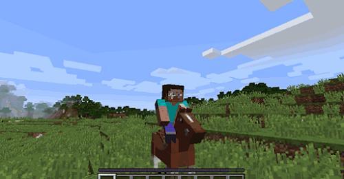 Để cưỡi ngựa cần phải tìm rất nhiều đồ phụ kiện