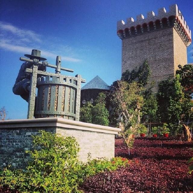 Phía ngoài lâu đài, hình tượng người nông dân xay nho được đặt trang trọng trên đồi cát như nhắc nhớ về lịch sử xa xôi của ngành trồng nho và làm rượu vùng Napa Valley. Các giống nho Cabernet Saugvinon, Syrah, Chardonnnay… cũng được đưa về trồng quanh lâu đài để giới thiệu với khách tham quan nguyên liệu làm nên các dòng vang danh tiếng của vùng thung lũng này.