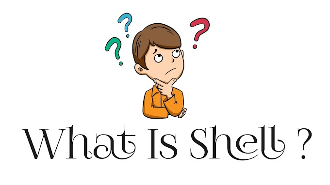 What is Shell | शैल क्या है | Shell Introduction