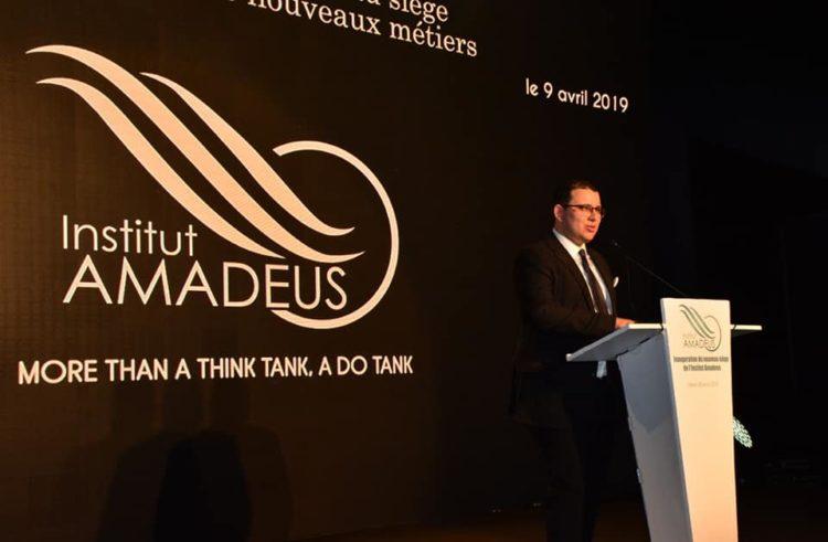 Institut Amadeus : Recommandations pour un modèle de développement durable