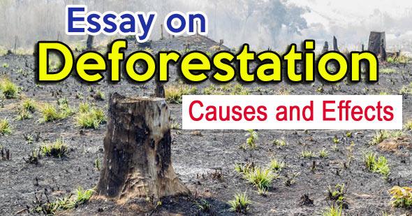 Essay on Deforestation
