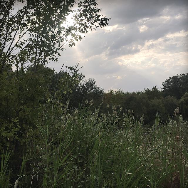 Foto paisaje Madirex