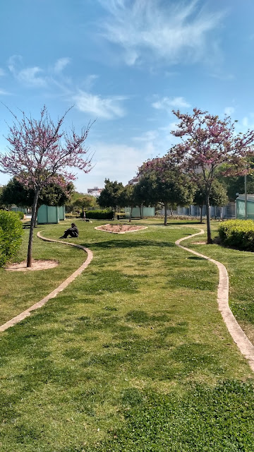 parki i place zabaw na Majorce dla dzieci