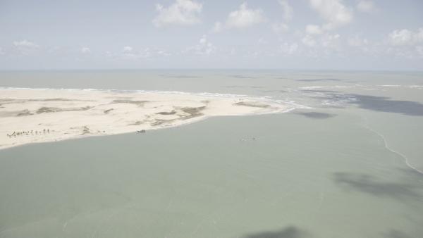 Órgãos ambientais  de Alagoas  constatam que óleo não chegou ao leito do Rio São Francisco