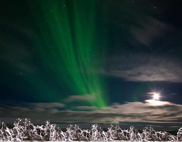 Wow, some passengers on the Viking Sky (not us) saw the northern lights (Source: Larry Lorimar)
