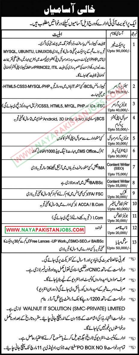 jobs in private company , pakistan 2019, private jobs in pakistan 2019, Private Company Jobs in Pakistan for IT Staff 2019 March