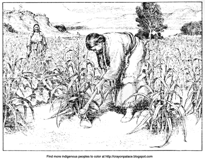 A Coloring Page Of Hidatsa Natives Cultivating Maize Corn