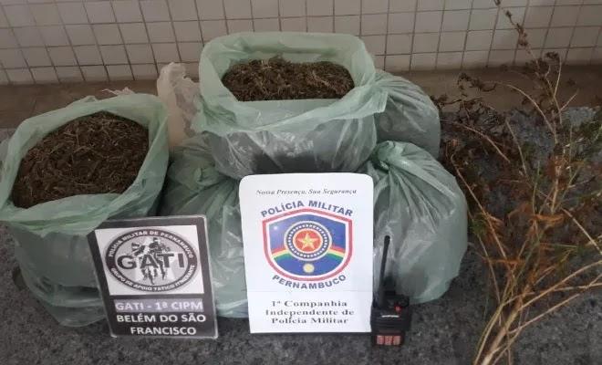 Floresta-PE: Policiais prendem dois homens com mais de 7 kg de maconha na Fazenda Poço da Forquilha