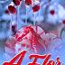 Livro | Romance: A Flor que o inverno não Levou (Lourenço Matimbe)