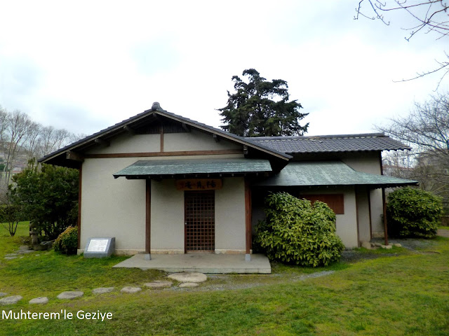 japon çay evi