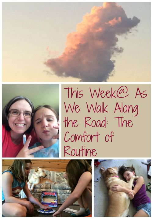 A look at our homeschool week